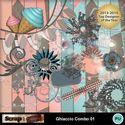 Ghiaccio_combo_01_small