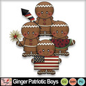 Ginger_patriotic_boys_preview_small