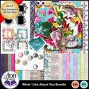 Whatilikeaboutyou_bundle_small