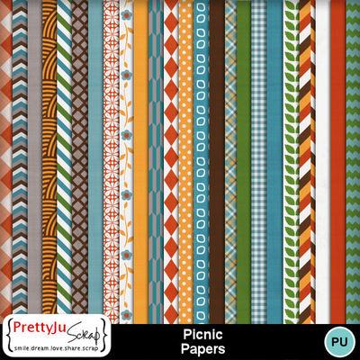Picnic_pp
