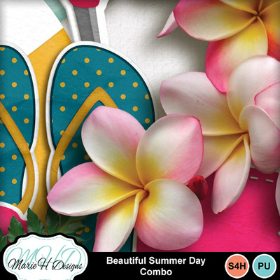 Beautiful_summer_day_combo_04
