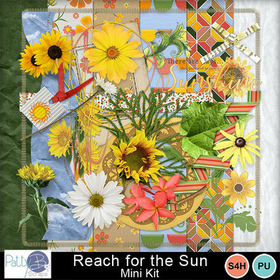 Pbs_reach_for_the_sun_mkall