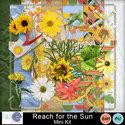 Pbs_reach_for_the_sun_mkall_small