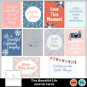 Sd_thisbeautifullife_journals_small