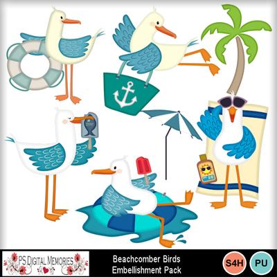 Beachcomber_birds