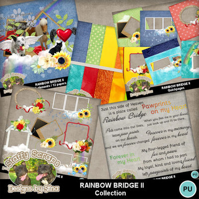 Rainbowbridgeii-12
