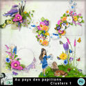 Louisel_aux_pays_des_papillons_clusters1_preview_small