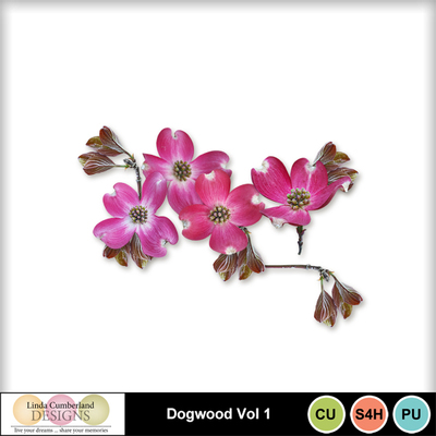 Dogwood_vol1-1