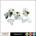 Dogwood_vol3-1_small