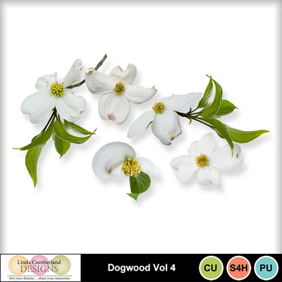 Dogwood_vol4-1