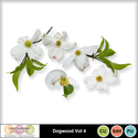 Dogwood_vol4-1_small