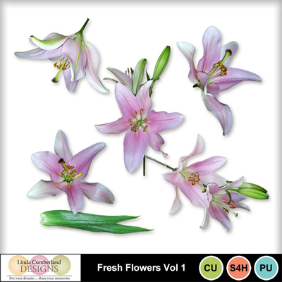 Fresh_flowers_vol1-1