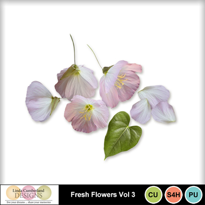 Fresh_flowers_vol3-1