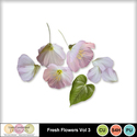 Fresh_flowers_vol3-1_small