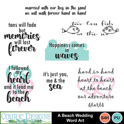 A-beach-wedding-kit-3