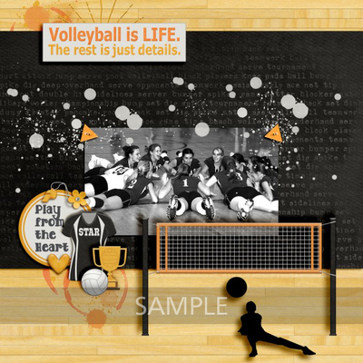 Volleyball-season-by-clever-monkey-graphics-lisa1