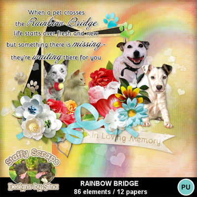 Rainbowbridge01