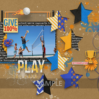 Volleyball-season-by-clever-monkey-graphics-susie1