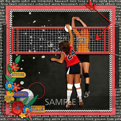 Volleyball-season-by-clever-monkey-graphics-linda1