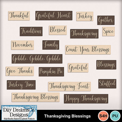 Thanksgivingblessings5