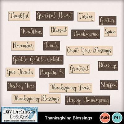 Thanksgivingblessings5
