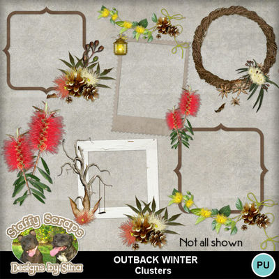 Outbackwinter11