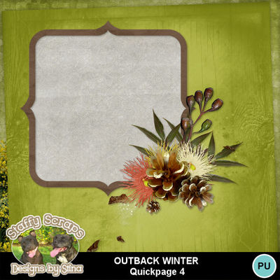 Outbackwinter06