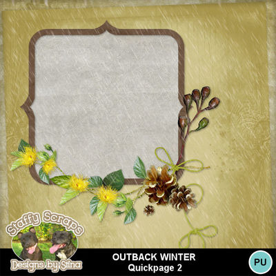Outbackwinter04