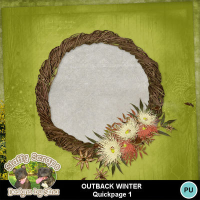 Outbackwinter03