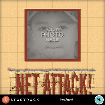 Net-attack-001