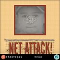 Net-attack-001_small