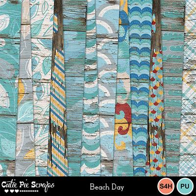 Beachday_11