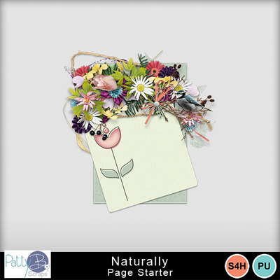 Pattyb_scraps_naturally_cluster1