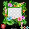 Frames2_675_small