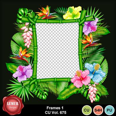 Frames1__675