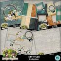 Cattitude12_small