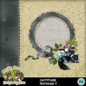 Cattitude04_small