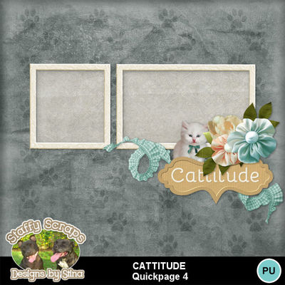 Cattitude06