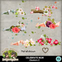 Celebratemum14_small