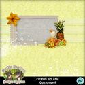 Citrusspash08_small