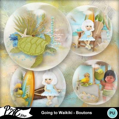 Patsscrap_going_to_waikiki_pv_boutons