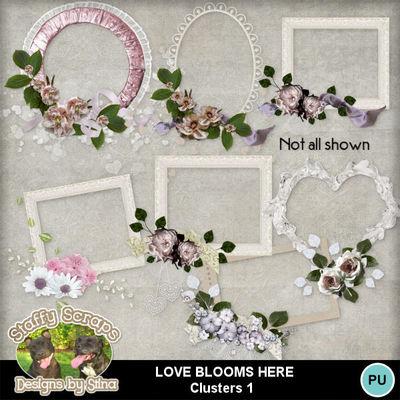 Lovebloomshere13