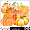 Autumn_pumpkins_small