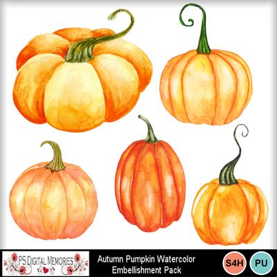 Autumn_pumpkins_2