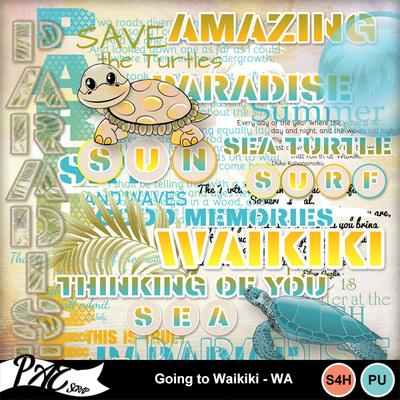 Patsscrap_going_to_waikiki_pv_wa
