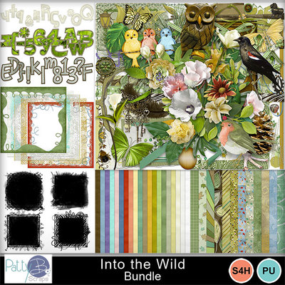 Pbs_into_the_wild_bundle