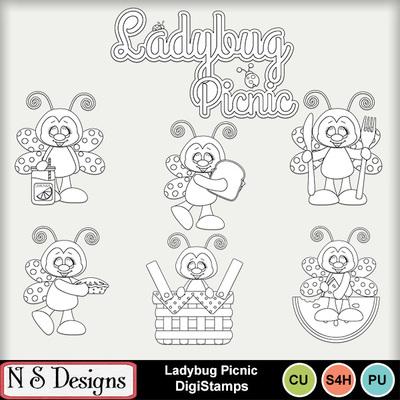 Ladybug_picnic_ds