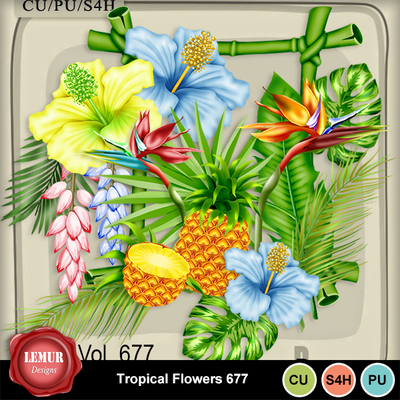 Tropical_flowers677