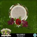 Bahhumbug8_small