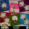 Bahhumbug9_small